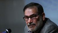 Şemhani: IŞİD'in hedeflerinin gerçekleşmemesinde İran'ın önemli rolü var