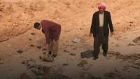 Sincar'da 80 Ezidi kadının cesedi bulundu