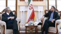 Emir Abdullahiyan: Bölgesel güvenliğe ulaşmak ancak siyasi çözüm yolu mümkündür