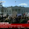 ABD'li öğrenciler silahlara karşı sokaklara çıktı
