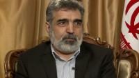 İran'da en ileri düzeyde nükleer teknolojinin devamına vurgu!