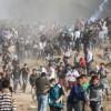Gazze Sınırında Yaralanan Filistinli Gazeteci de Şehit Oldu