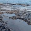 İranlı uzmanlar arıtma çamurunu çimento üretiminde kullanmayı başardılar
