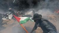 Fransa, İngiltere gibi batılı ülkelerden siyonistlerin cinayetlerine tepki