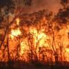 ABD'de orman yangınları durmak bilmiyor