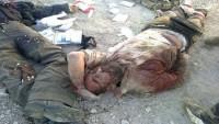 Halep'te 29 terörist daha öldürüldü