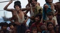 Rohingyalı Müslümanlara Yönelik Cinayet, Tecavüz ve Katliamlar