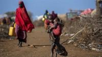 Etiyopya'da İnsani Kriz