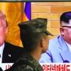 Tillerson: Kuzey Kore lideri ile görüşme düşüncesi, Trump'a aittir