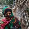 B.A.E'nin İşgalindeki Sokotra Adası'nda 'Açlık' Alarmı