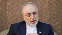 Salihi: İran İslam Cumhuriyeti tedbirli davrandı ve kendini daha yüksek konuma yerleştirdi