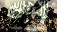 ABD Sitesi: Amerika'nın müttefiği olan Arabistan, dünyada terörü yaygınlaştırıyor