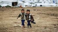 Almanya'ya gelen sığınmacı çocuklardan 8 bini kayboldu