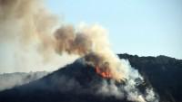İzmir'in çeşme ilçesinde 4 hektarlık orman yok oldu