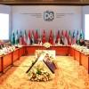 D8 üyeleri: Milli para biriminden yararlanmak önceliğimizdir