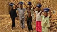 Demokratik Kongo Cumhuriyeti'nde Açlık Hat Safaya Ulaştı