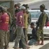 Siyonist İşgal Güçleri Filistinli Bir Çocuğu Gözaltına Aldı