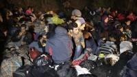 Sürgünün Vatanı Yok: Ezidiler İstanbul'dan Mardin'e geri gönderildi