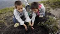 Ekvador halkı, bir günde 650 bin ağaç dikti