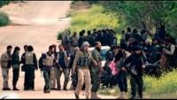 Fetih Ordusu teröristlerinin komutanları Türkiye sınırına kaçıyor