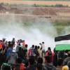 Uluslararası ve bölgesel örgütler, işgal rejiminin cinayetlerine tepkili