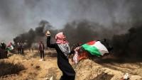 Filistinli Gençler, İmam Seyyid Ali Hamanei'nin Arap Gençlere Yönelik Çağrısını Değerlendirdiler