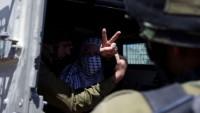 Siyonist İsrail Askerleri Filistinli Bir Genç Kızı Gözaltına Aldı