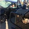 Nablus Yakınlarındaki Arabayla Çarpma Eyleminde 4 Siyonist İsrail Askeri Yaralandı