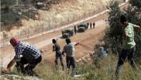 Filistinli gençler Kudüs intifadasını tüm hızıyla sürdürüyor