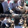 Eve Dönüş Yürüyüşlerinde Gazze Direnişinin Şehid Sayısı 20, Yaralıların Sayısı da 750'ye Ulaştı