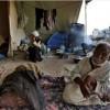 """UNRWA: """"Gazze Halkının Yarısı Gıda Güvenliğinden Mahrum"""""""