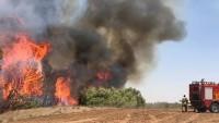 Gazze Şeridi Sınırına Yakın Yahudi Yerleşkelerinde 4 Yerde Yangın Çıktı 