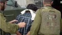 Siyonist Rejim Güçleri, El-Halil, Nablus ve Cenin'de 22 Genci Gözaltına Aldı