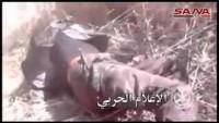 Video: Suriye Ordusunun Halep Operasyonlarından Kareler