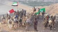 Yemen'de BAE ve Suudi Destekli Gruplar Kendi Aralarında Çatışıyor