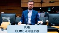 İran İslam Cumhuriyeti Petrol Bakanı Zengene, petrol ihraç eden ülkeler teşkilatı OPEC'in alacağı her hangi bir kararın İran milletinin çıkarları aleyhine olursa veto edeceklerini söyledi.  OPEC üyesi ülkeler ve OPEC üyesi olmayan ülkelerin Cezayir'de toplanacak anlaşmayı denetleyen istişare kurulu arifesinde Plates, ve Bloomberg'e açıklamada bulunan Zengene bu konuyu belirtti.  Kendisinin Cezayir toplantısına katılmayacağını ve esasen komitenin bir karar alma yetkisinin de olmadığını ve denetimlerinin de belirleyici olmadığını belirten Zengene, komitenin denetleme yetkisi olduğunu ve durumu bakanlar kuruluna sevk etmesi gerektiğini söyledi.İşbirliği bildirilerinin OPEC'in yerine geçemeyeceğini bazılarının OPEC'i kurban etmeye çalıştıklarını ifade eden Zengene, OPEC'in 3. Dünya ülkelerinin önemli başarılarından biri olduğunu ve güçlü bir kurum olduğunu belirtti.  OPEC üyesi özellikle iki ülkenin İran aleyhtarı akımın başına çekmelerinin doğru olmadığını ifade eden Zengene, ''Biz piyasada arz azlığı olmasına izin vermeyiz diyenlerin sözleri ekonomik değildir. Bu sözler yüzde 100 siyasi ve İran aleyhtarı sözlerdir. Bu sözler Amerika politikaları ile ayni yön ve İran aleyhine baskı uygulamak içindir. Bu sözün anlamı, Amerika'ya istediğin kadar İran'a baskı uygula, biz piyasanın sorunla karşılaşmasına izin vermeyiz'' dedi.  İran'ın petrol üretim, satış, taşıma ve müşterileri ile ilgili hiçbir açıklamada bulunmayan Zengene, bu bilgilerin Amerika tarafından İran aleyhine kullanılabileceğini söyledi.OPEC üyesi ülkelere mektup gönderdiğini ifade eden Zengene, mektupta İran'ın üretimi veya ihracatının her hangi bir olayla karşılaşması durumunda sorunların çözümünden sonra İran'ın hiçbir karara gerek duymadan esas üretimine geri döneceğini vurguladığını söyledi.  Petrol fiyatlarının artış ivmesinde olduğunu fakat Amerika'nın Kasım ayında fiyatın önlenmesi ve artmasına çalıştığını ifade eden Zengene, fiyatların artması durumunda bunun Amerika'nın seçimlerini etkileyeceğini söy