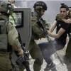 İşgal Güçlerinin Batı Yaka'daki Baskın ve Tutuklamaları Devam Ediyor