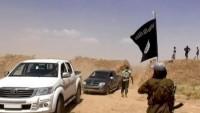2 bin 500 Avrupalı, IŞİD saflarında savaşıyor
