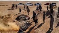 IŞİD, Suriye'de son dört günde 100 adamını idam etti