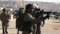 Siyonist İsrail askerlerinden Filistinli tutuklulara köpekli taciz