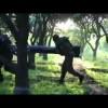 Video: Kassam Tugayları ilk kez Tel Aviv'i vuran M75 füzesini yayınladı