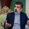 Kemalvendi: UAEA bağımsızlığını korumalıdır