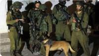 Cenin'de çıkan çatışmada Filistinli bir genç göğsünden yaralandı