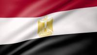 Mısır İnsan Hakları Merkezi: Suud ve Katar ABD Ve Siyonistlerin Bölgedeki Uşaklarıdır