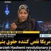 Press TV muhabirinin tutuklanması ırkçılık belirtisidir