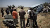 Siyonist Sürücü Nablus'ta Filistinli Çobana Ait Sürüye Çarptı