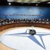 NATO, Gürcistan'da askeri tatbikat başlattı