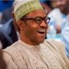 Nijerya Müslümanların Katili Buhari, Yeniden Aday Olacak