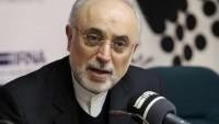 İran'dan AB'ye: Geç olmadan verdiğiniz sözü tutunuz
