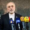 Salihi: İran nükleer anlaşma öncesindeki nükleer faaliyetlerine dönmeye hazır
